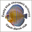 http://www.discus.cz/